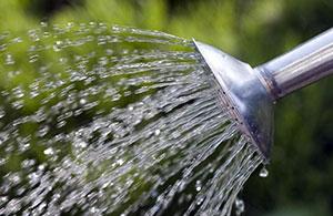 дождевой-полив